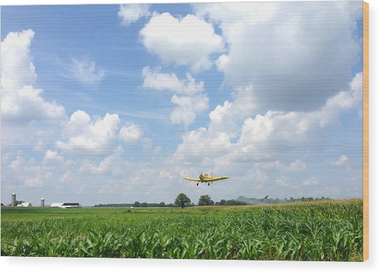 Yellow Crop Duster Wood Print