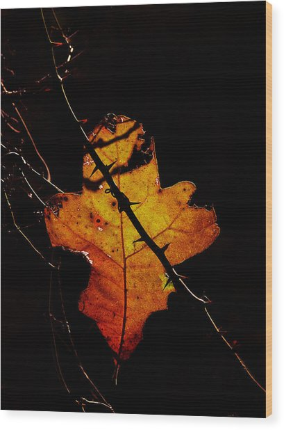 Cross And Thorns Wood Print