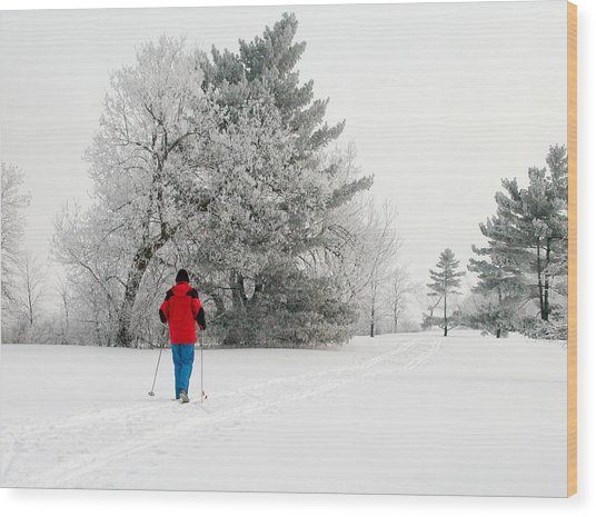 Cross Country Skiing Wood Print by Rob Huntley