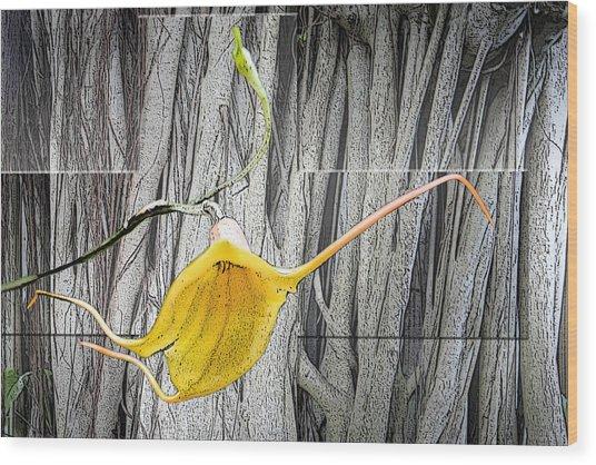Cross Reach Wood Print
