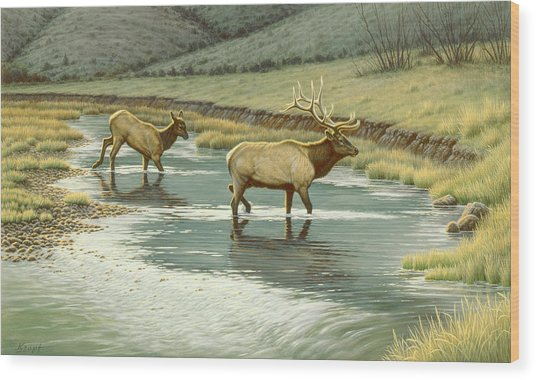 Crossing The Gardiner Wood Print