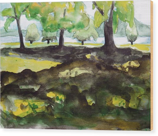 Croton Point Park Wood Print by Valerie Lynch