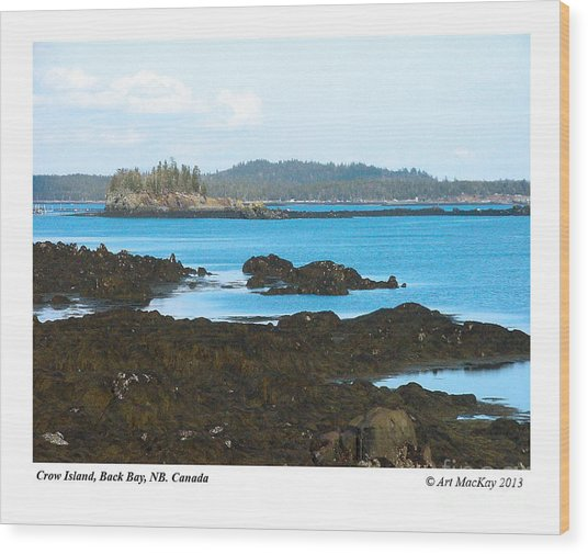 Crow Island Bay Of Fundy Nb Wood Print