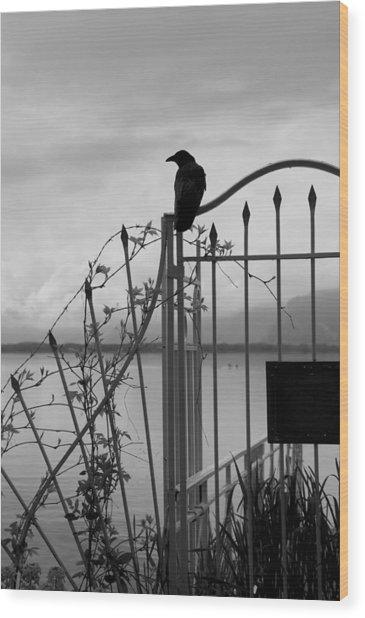 Crow On Gothic Gate Wood Print