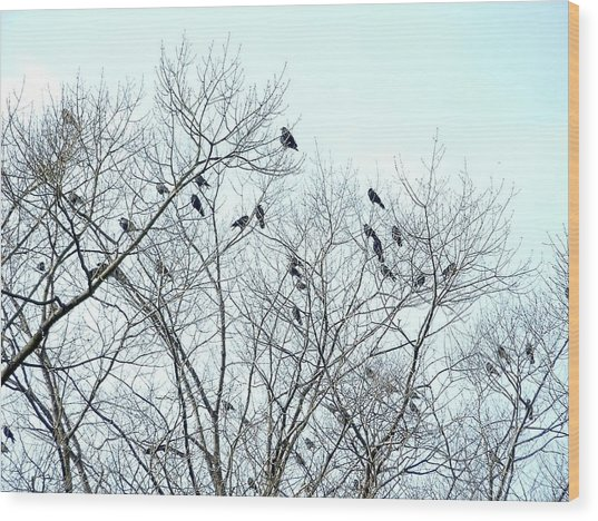Crow Trees Wood Print