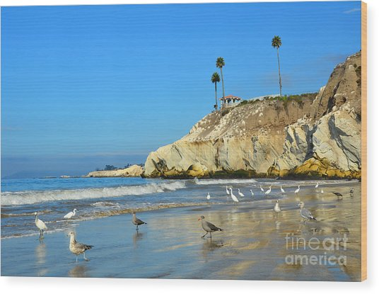 Crowded Beach Wood Print