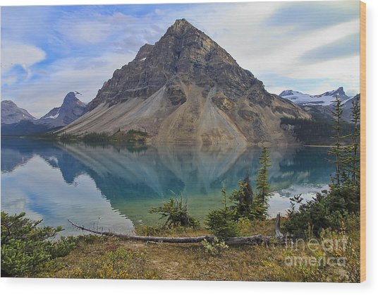 Crowfoot Mountain Banff Np Wood Print