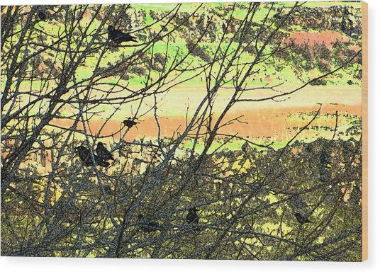 Crows And Two Blackbirds Wood Print