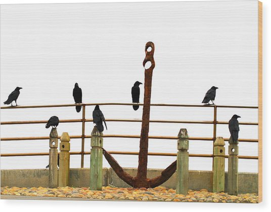 Crows At Anchor Wood Print