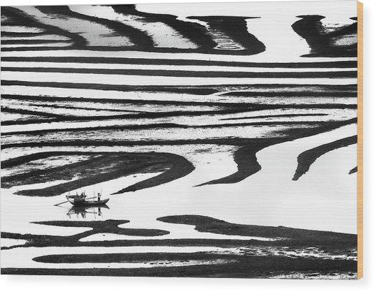 Cruising On A Zebra Wood Print