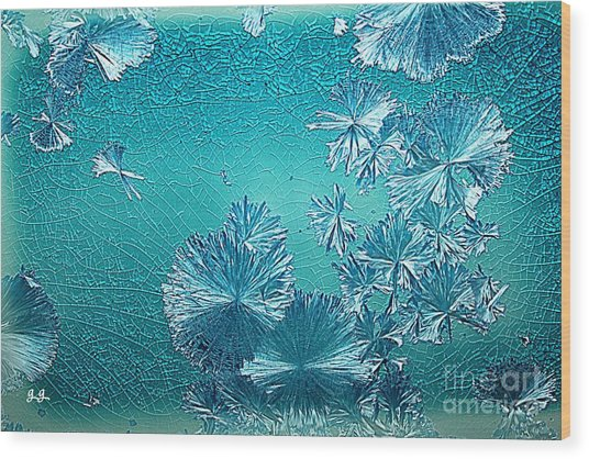 Crystal Blue Persuasion Wood Print