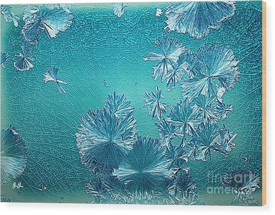 Crystal Blue Persuasion Wood Print