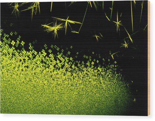 Crystals Of Antibiotic Tetracycline Wood Print by David Parker