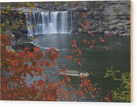 Cumberland Falls Wood Print by Bj Hodges