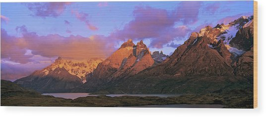 Cumbres, Torres And Cuernos Del Paine Wood Print by Martin Zwick