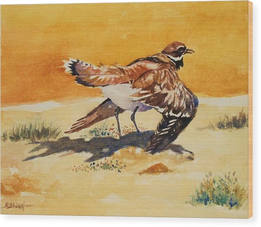 Curious Killdeer Wood Print