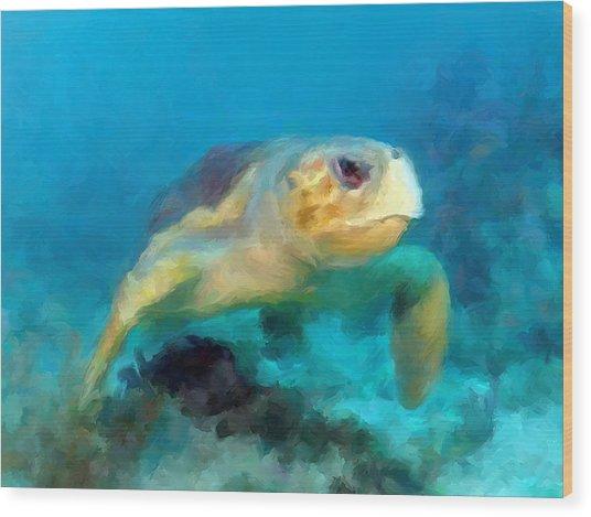Curious Sea Turtle Wood Print
