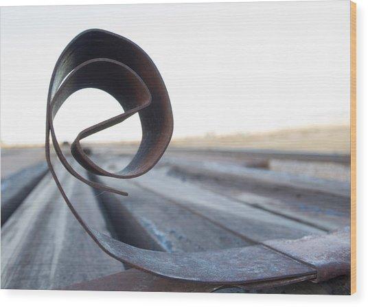 Curled Steel Wood Print