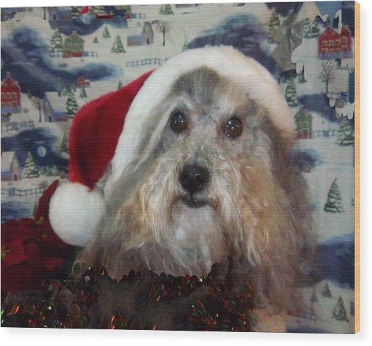 Curlys Christmas Wood Print by Rosalie Klidies