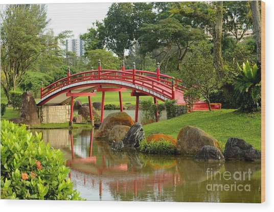 Curved Red Japanese Bridge And Stream Chinese Gardens Singapore Wood Print