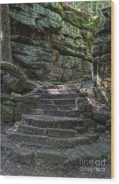 Cuyahoga Valley National Park Wood Print