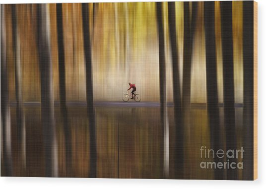 Cyclist In The Forest Wood Print