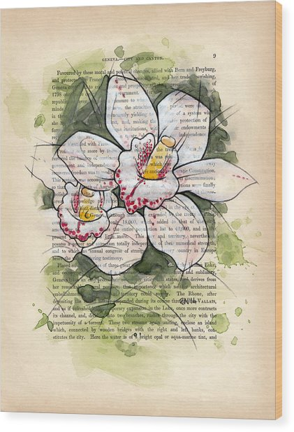 Cymbidium Flowers Wood Print by Rudy Nagel