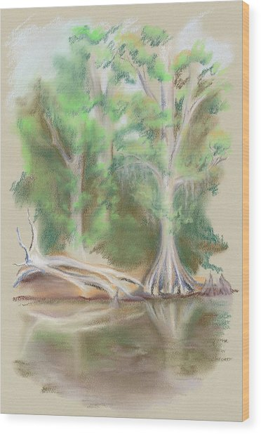 Cypress By The Waccamaw River Wood Print by MM Anderson
