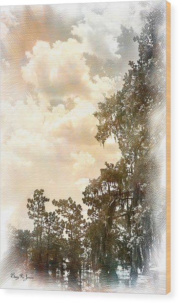 Swamp - Louisiana - Cypress Heaven Wood Print by Barry Jones