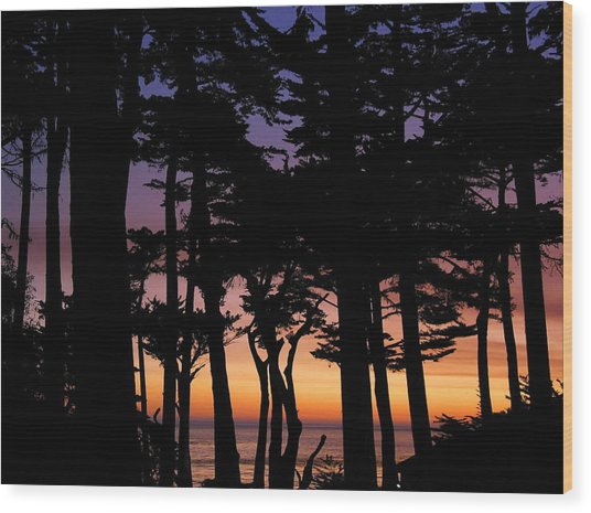 Cypress Sunset Wood Print