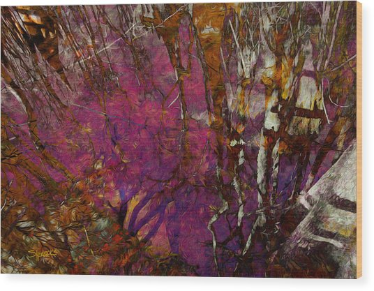 Cypress Swamp Abstract #2 Wood Print