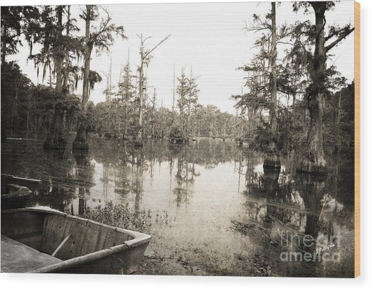 Cypress Swamp Wood Print
