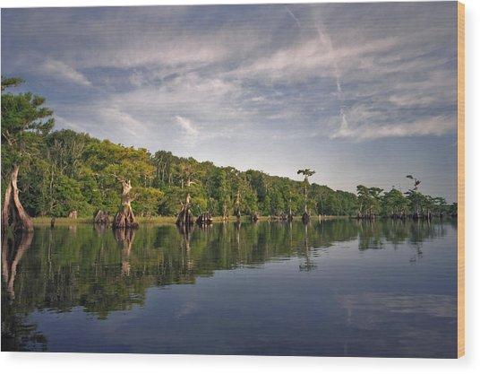 Cypress Wall. Blue Cypress Lake. Wood Print