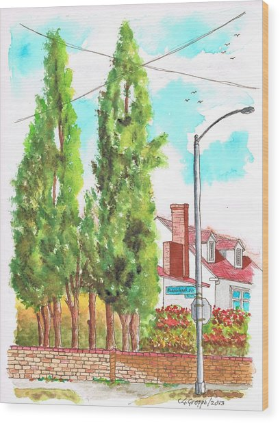 Cypresses In Massachusett Ave - Westwood - California Wood Print by Carlos G Groppa