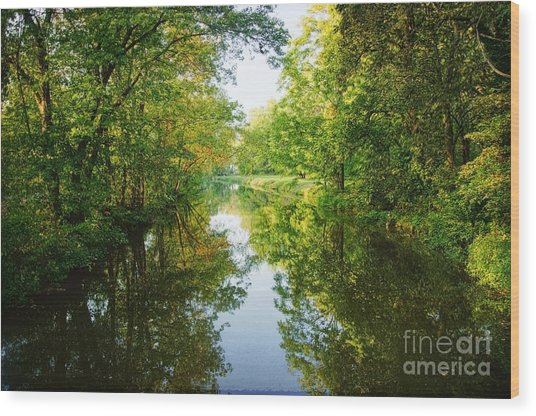 D And R Canal  Wood Print