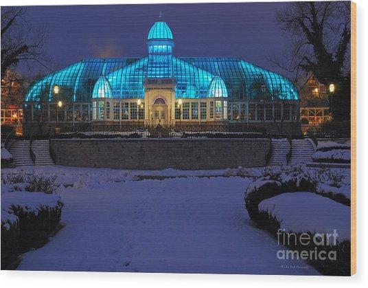D5l-291 Franklin Park Conservatory Photo Wood Print