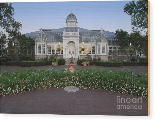 D5l-79 Franklin Park Conservatory Wood Print