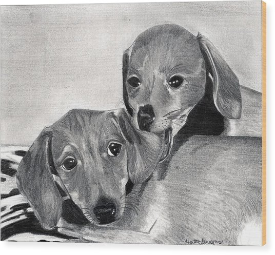Dachshund Puppies Dog Portrait  Wood Print by Olde Time  Mercantile