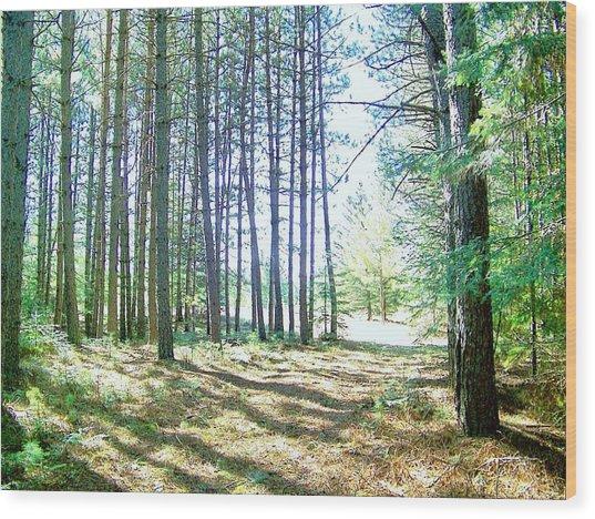Dad's Woods I Wood Print