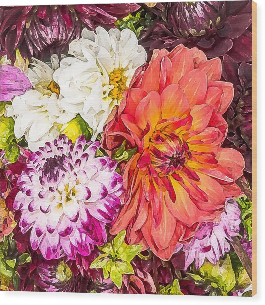 Dahlias Number 4 Wood Print