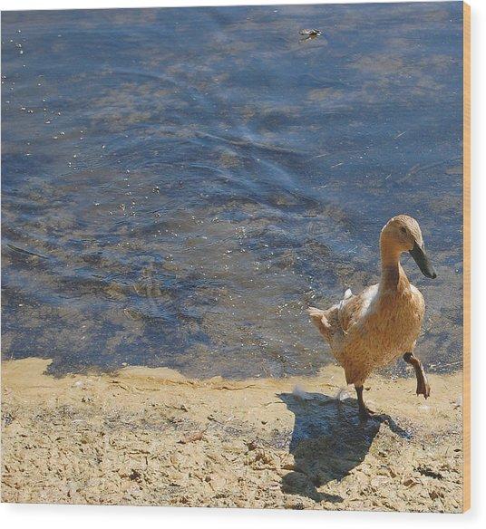 Dainty Duck Wood Print