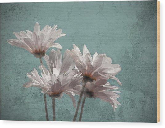 Daisies V Wood Print