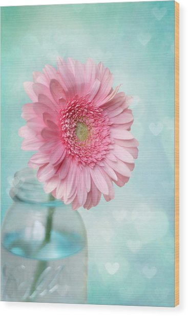 Daisy Love Wood Print