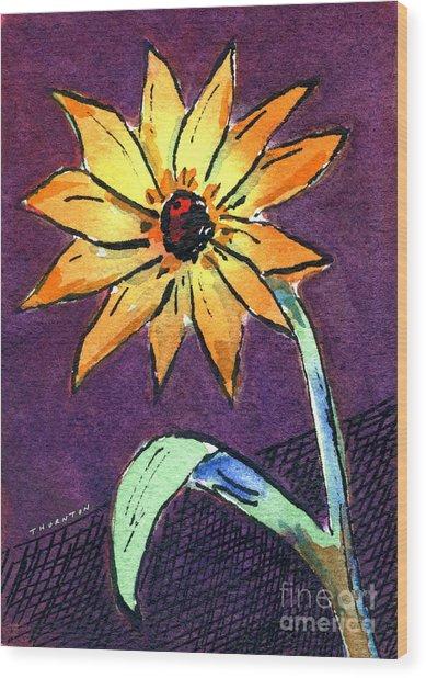 Daisy On Dark Background Wood Print
