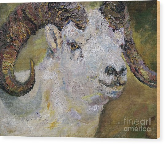 Dall Sheep Ram Wood Print