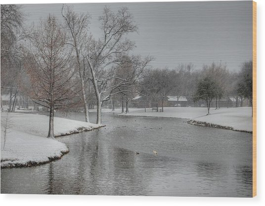 Dallas Snow Day Wood Print