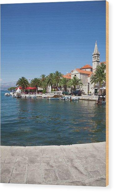 Dalmatian Panorama Wood Print by Photovideostock