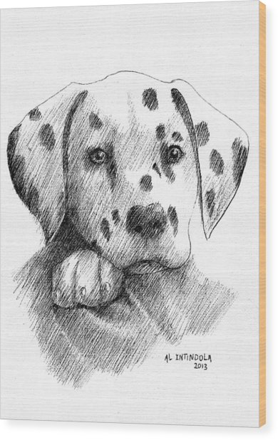 Dalmatian Puppy Wood Print
