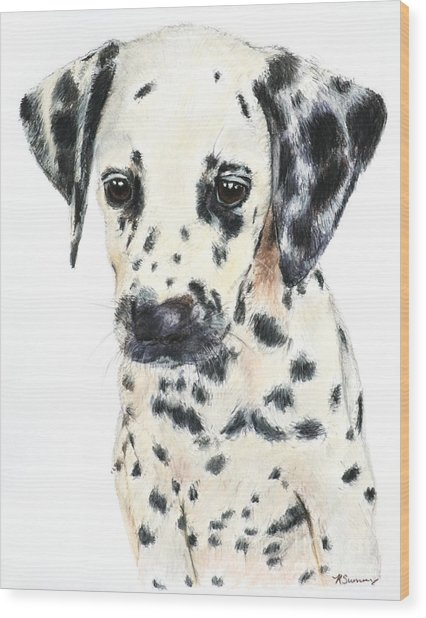 Dalmatian Puppy Painting Wood Print