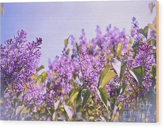 Dance Of The Lilacs Wood Print